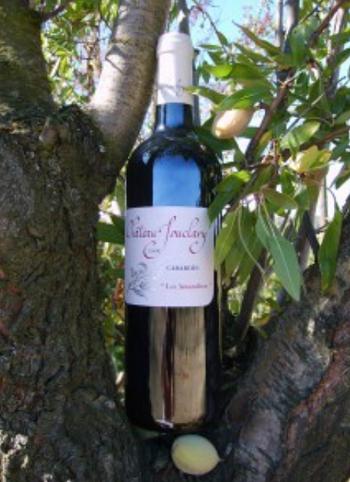 Dans votre cave à vin: Le Cabardès Amandiers