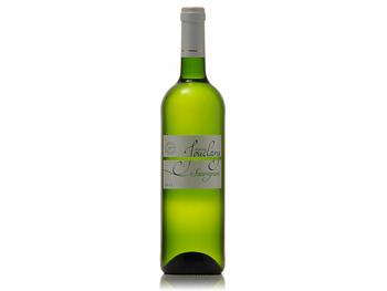 Dans votre cave à vin: Le Sauvignon Jouclary - blanc - Vin de Pays d''Oc